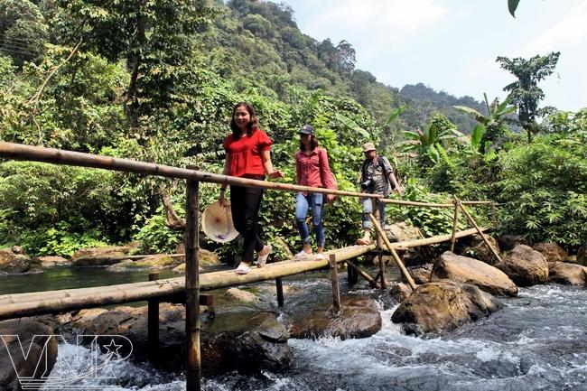 Un pont en bambou qui rehausse la beauté primitive du ruisseau Nuoc Mooc.