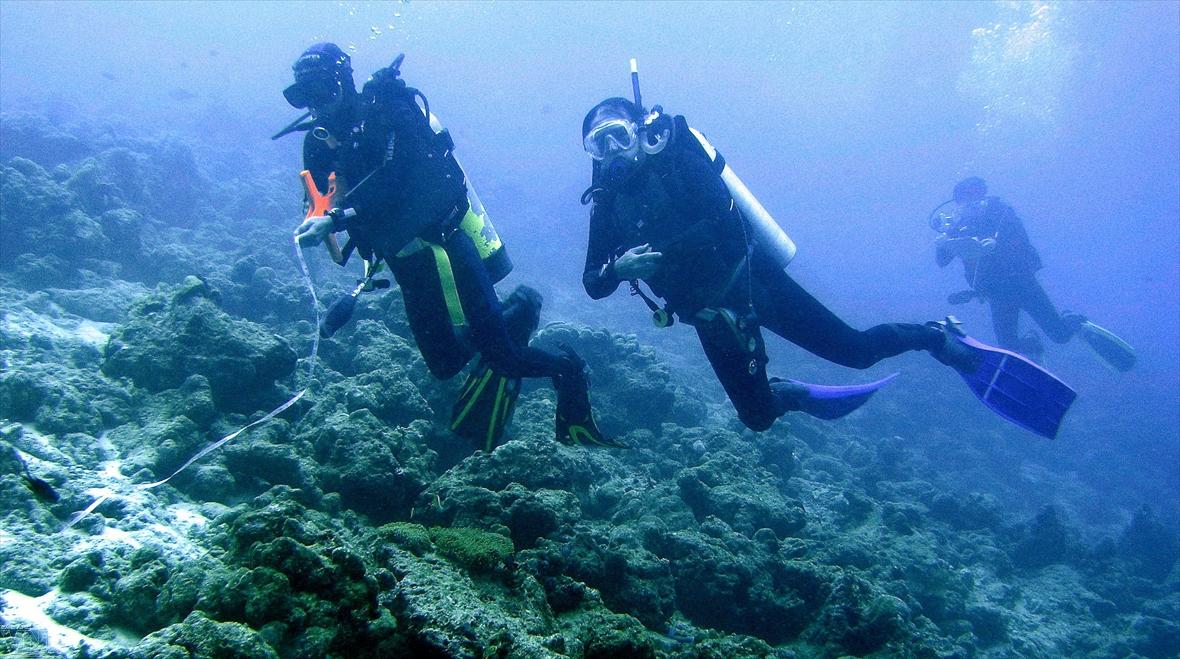 침묵하는 전사들이 참(Chàm)섬을 보호하다