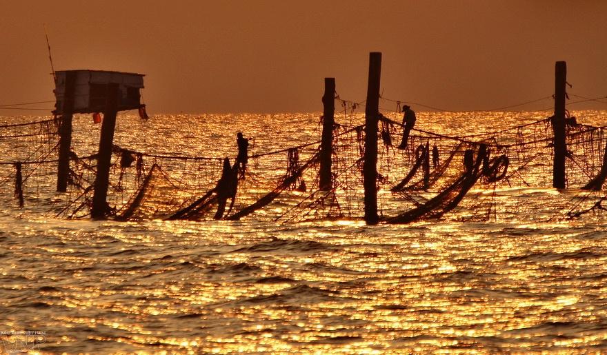 붕따우(Vũng Tàu)바다 바닥에 말뚝을 박아  그물을 던져 고기를 잡다.