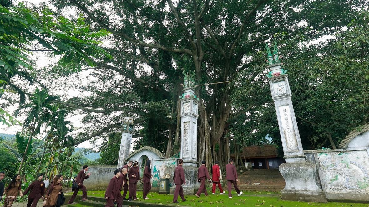 伞园山圣庙的古榕树