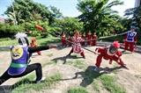 Palo largo - un arma tradicional de las artes marciales