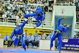 第二届世界越武道锦标赛