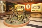 Museo de Armas de Vietnam