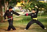 Art martiaux : la  Độc lư thương  un héritage des Tây Sơn
