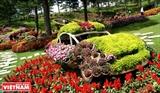 Романтическая красота Долины Любви