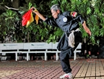 Sereno espíritu de un maestro de artes marciales