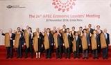 제 24 차 APEC 정상회의에서 베트남이 참신한 의견들을 제시하다