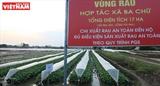 Кооперативы нового типа - стержень для сельскохозяйственного сектора
