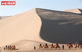 Exploring the Gobi desert