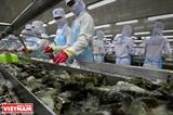 Minh Phu - основной бренд морепродуктов Вьетнама