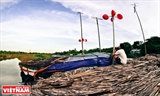 Énergie éolienne dans un village flottant du Fleuve Rouge à Hanoi
