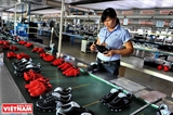 Leather Industry Ready for New FTAs