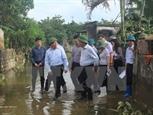 Phó Thủ tướng Phạm Bình Minh thị sát các tuyến đê xung yếu tại Thanh Hóa