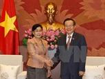 Việt Nam giúp Lào nâng cao năng lực cho cán bộ ngành kiểm toán