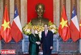 越南智利加强全面合作关系
