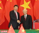 中国国家品牌网总编对越中经济关系前景给予积极评价