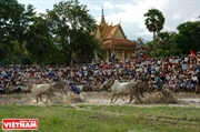 An Giang Border Province: New Vitality