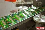 Чай Хоан Нгок: целительный напиток из лечебного растения