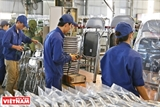 Xuan Hoa: From Local Bike Maker to Global Furniture Supplier