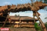Деревни лиственных домов