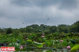 람사르 랑샌(Ramsar Láng Sen) 습지보존 구역 여행객들을 매료시키다