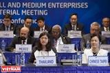 Hội nghị Bộ trưởng Doanh nghiệp nhỏ và vừa APEC 2017