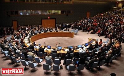 越南与联合国合作40周年