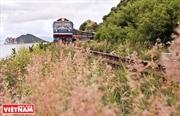 Journeys along Vietnam on rolling train wheels