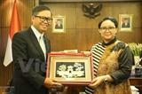 Вьетнам и Индонезия продолжают вносить вклад в развитие АСЕАН