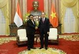 Президент Вьетнама принял председателя Совета представителей регионов Индонезии