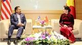Содействие обмену мнениями между НС Вьетнама и парламентариями стран