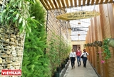 Da Lat cafe promotes green tourism