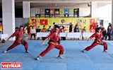 Lac Viet Vo dao – A combination of martial arts and traditional medicine