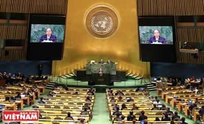 Vietnam apoya papel central de ONU en sistema multilateral