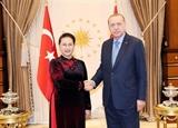 Вьетнам готов стать мостом содействующим развитию отношений между Турцией и АСЕАН
