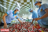 Fabricante de dulces lleva a Ben Tre al mundo