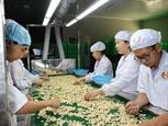 Cải thiện chính sách thúc đẩy hợp tác kinh tế Việt Nam-Romania