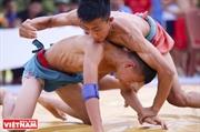 La lutte traditionnelle ou lattractivité   dune discipline séculaire