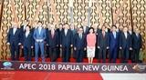 Участие Премьер-министра Нгуен Суан Фука в мероприятиях 26-го саммита АТЭС