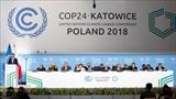 По итогам COP 24 был разработан проект совместного заявления