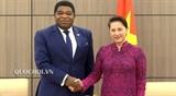 Председатель НС Вьетнама приняла Генерального секретаря МПС