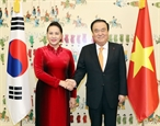 Vietnam- RoK relations to grow further
