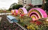 В Хошимине открылась цветочная улица Нгуен Хюэ 2018
