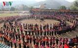 Вьетнамцы весело гуляют во время тэтских праздников