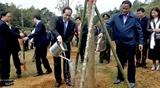 Президент Вьетнама принял участие в Празднике посадки деревьев