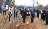 Праздник посадки деревьев в знак выражения признательности Президенту Хо Ши Мину
