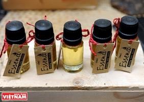 VietHerb và hành trình gìn giữ cây thuốc Việt