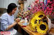 Tinh tế hoa giấy Flower Farm