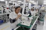 KITA: Вьетнам станет вторым крупнейшим импортером Республики Корея