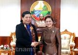 Вьетнам и Лаос расширяют сотрудничество по парламентскому каналу